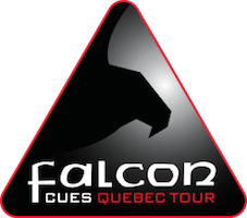 logo-falcontour